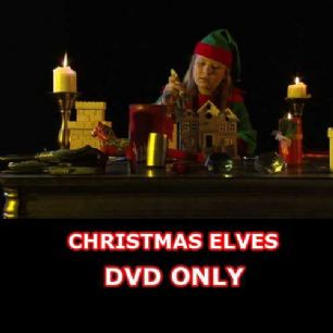VIRTUAL CHRISTMAS ELVES DVD